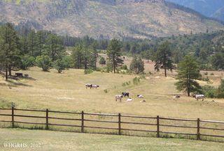 Hamilton Ranch 2012 035