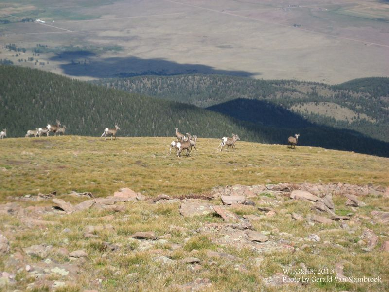 Humboldt Peak3