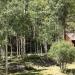 Aspen Grove at Silver Park Ranch