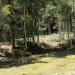 Meadow at Silver Park Ranch