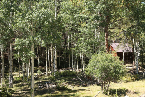 Aspen Grove at Silver Park Ranch
